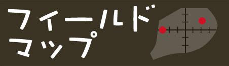 フィールドマップ